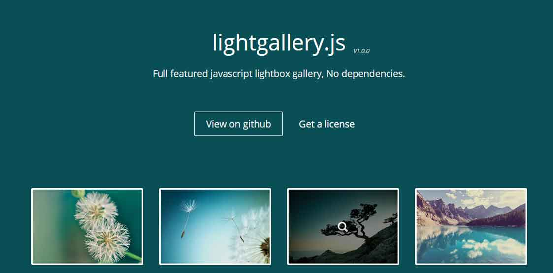 Full Responsive JavaScript image and video gallery