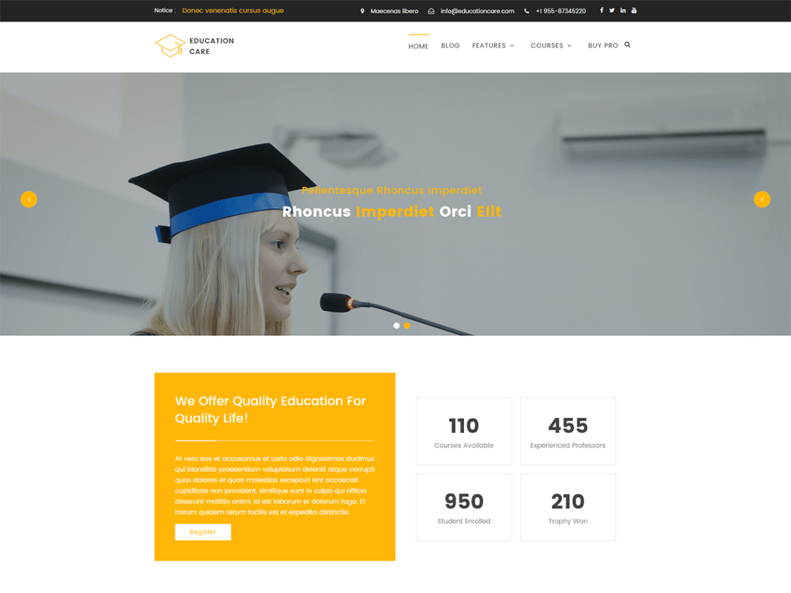 free institution wordpress theme downlad